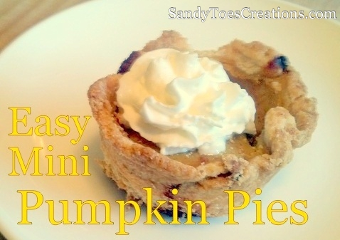 Perfect treat for your holiday party - Mini pumpkin pies are really easy, adorable, and taste delicious. pre made pie crust and pumpkin pie filling or homemade, this holiday dessert is fantastic!