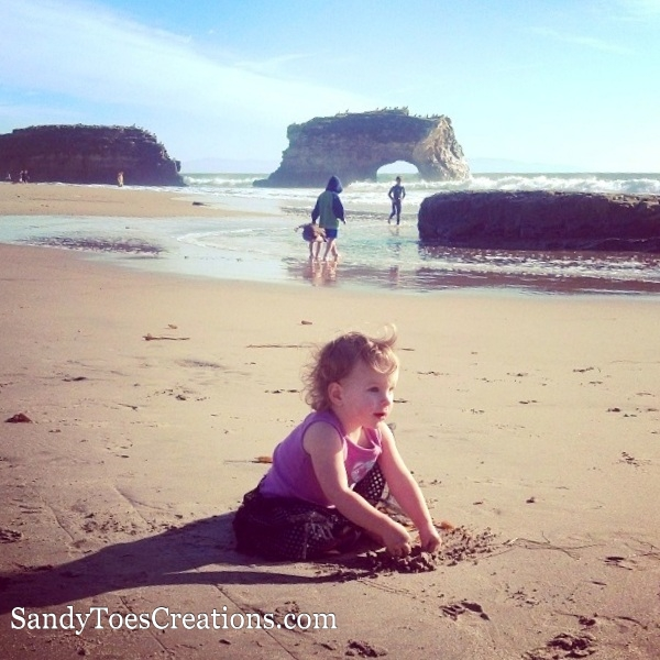 Best beaches in Santa Cruz California