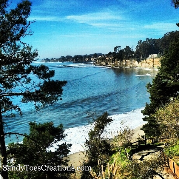Best family beaches in Santa Cruz California