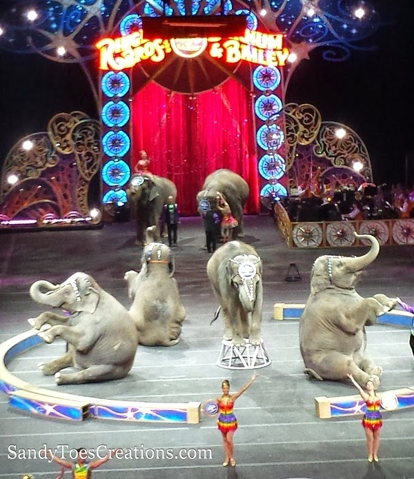 Unforgettable Family Fun at The Greatest Show on Earth