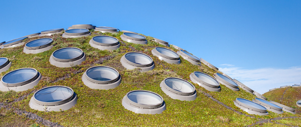 Living roof #green #greenliving #SunrunSolar #CG