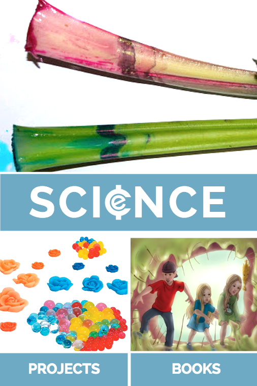 science projects and discount science curriculum packs. Tons of homeschool science all in one place. Magic School Bus, science books, science experiments, and more fun. Don't miss this sale!