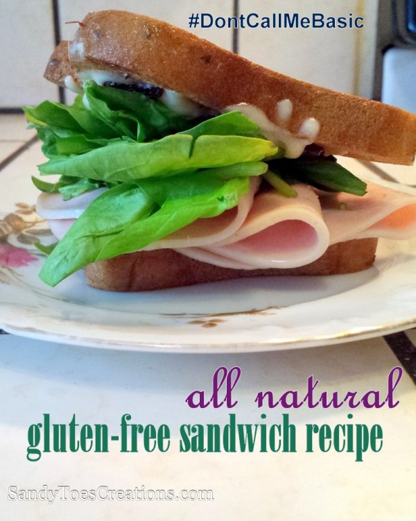 Can you still eat sandwiches if you're on a gluten free diet? Of course! With gluten-free bread you can make tasty, quick gluten free lunches. Try this gourmet sandwich recipe that is so easy and makes for one delicious lunch idea.  All natural turkey and cranberry, like Thanksgiving dinner in a light meal. Take your sandwich from boring to amazing!