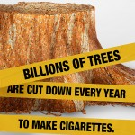 Cigarette Butts Hurt the Environment. Know the Facts #NoMasButts #MondayMatters