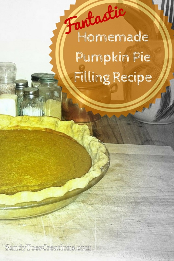 DIY pumpkin pie filling is not hard! It's actually easy to make homemade pie filling with this pumpkin pie recipe. Wow your family this Thanksgiving or Christmas with your delicious dessert for your holiday party treat