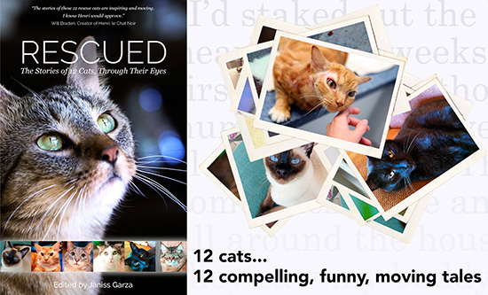 Rescued book benefits animal shelters this month | Animal Charities | causes