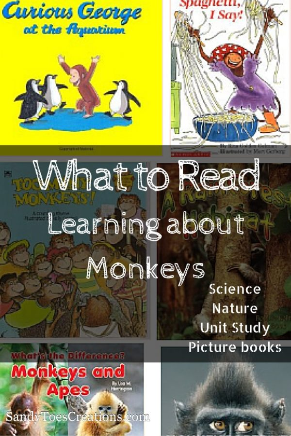 mended books for learning about Monkeys and primates. From picture books for preschoolers or kindergarten to science books and early readers. Perfect for your homeschool unit studies science curriculum