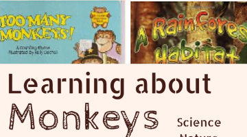 Learning about Monkeys