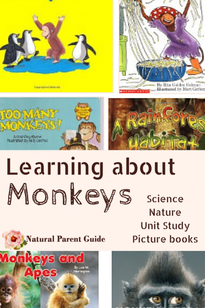 Kids books for learning about Monkeys and primates. From picture books for preschoolers or kindergarten to science books and early readers. Perfect for your homeschool unit studies science curriculum