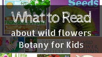 Books that Teach Kids about Wild Flowers