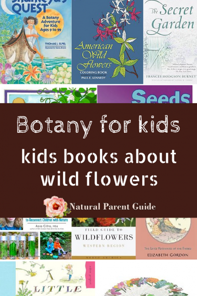 wild flowers and botany childrens books | books for kids | homeschool science curriculum