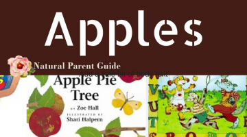 Childrens books about apples Science Reading Homeschool curriculum | picture books | fall books | fall reading | apples childrens books