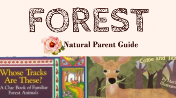 Learn About the Forest- Wonderful Kids Books #WTRW
