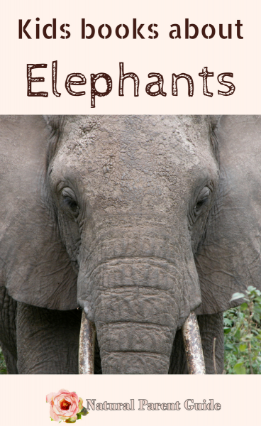 Kids books about elephants | learn about elephants with these children's books | stories | bedtime books | animal books | what to read | wtrw