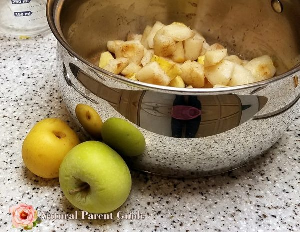 homemade chunky apple pear sauce
