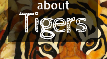 Childrens Books About Tigers