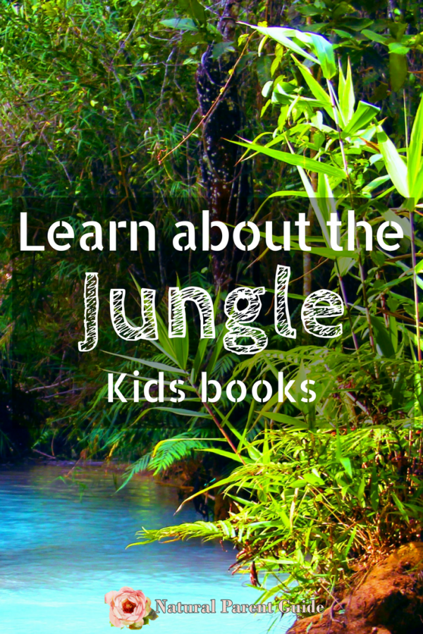 Learn about the jungle with kids books | jungle books | kid books | good reads for kids | homeschooling | jungle animals | Amazon rain forest | Jungles of India | geography homeschool