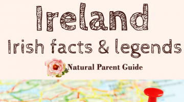 Learn About Ireland Childrens Books