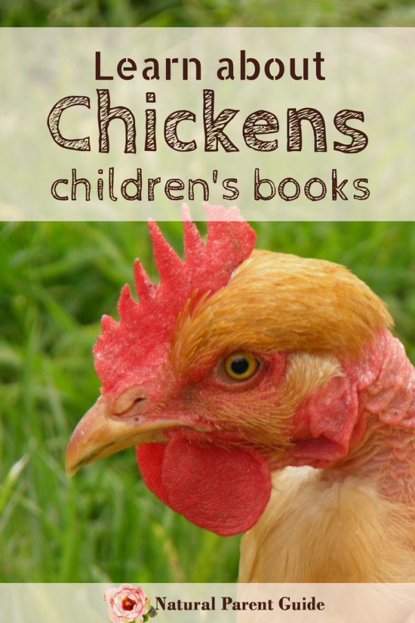 kids books about chickens | learn about chicks childrens books | homeschooling | spring activities for kids | preschool ideas