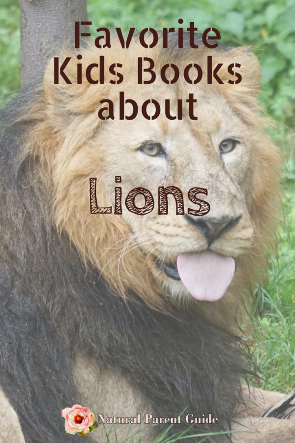 kids books about lions | learn about lions childrens books | homeschooling | educational activities for kids | preschool ideas | novels featuring lions | best picture books