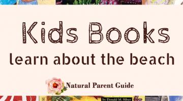 books for kids about the beach and ocean | childrens books about the beach | beach books | picture books | homeschooling | beach unit study | ocean study | homeschool
